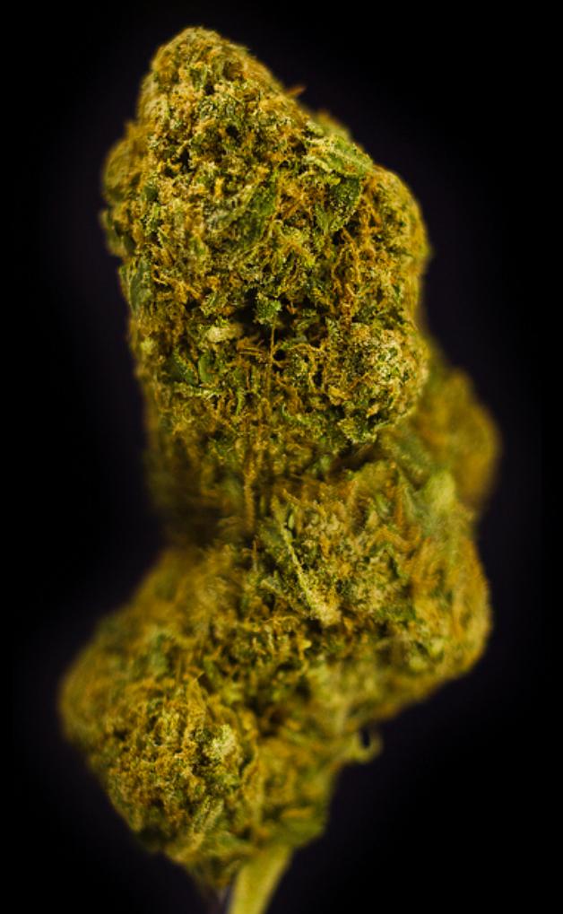 - 70% Indica / 30% Sativa Hybrid