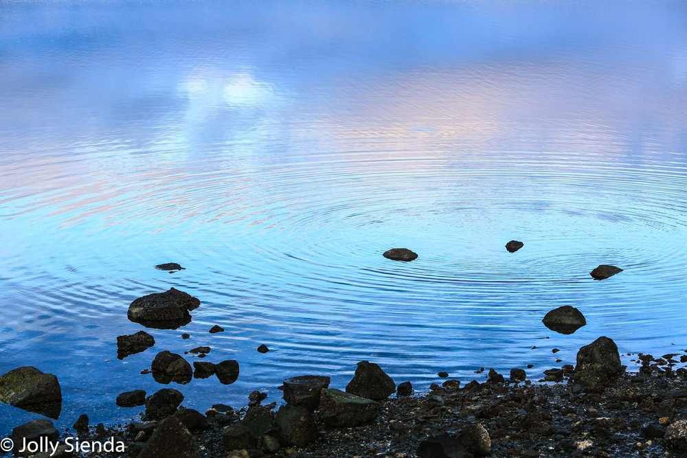 Circular pastel rings ripple on the water next to a rock beach a