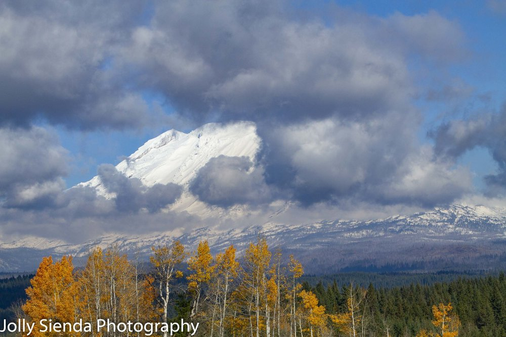 Ring of clouds dance around snow capped Mount Adams with Autumn deciduous trees a blaze