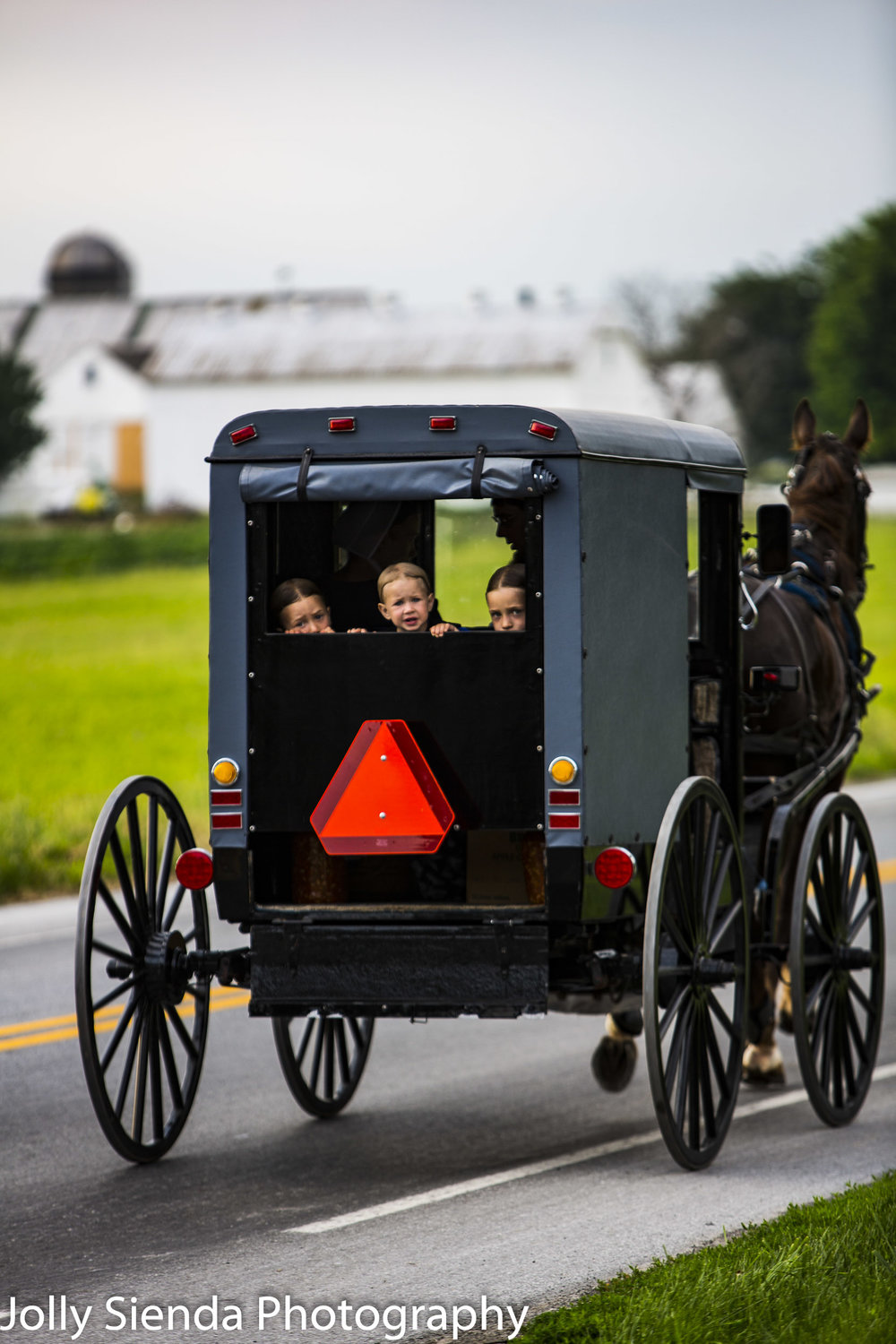 Amish children in a grey buggy