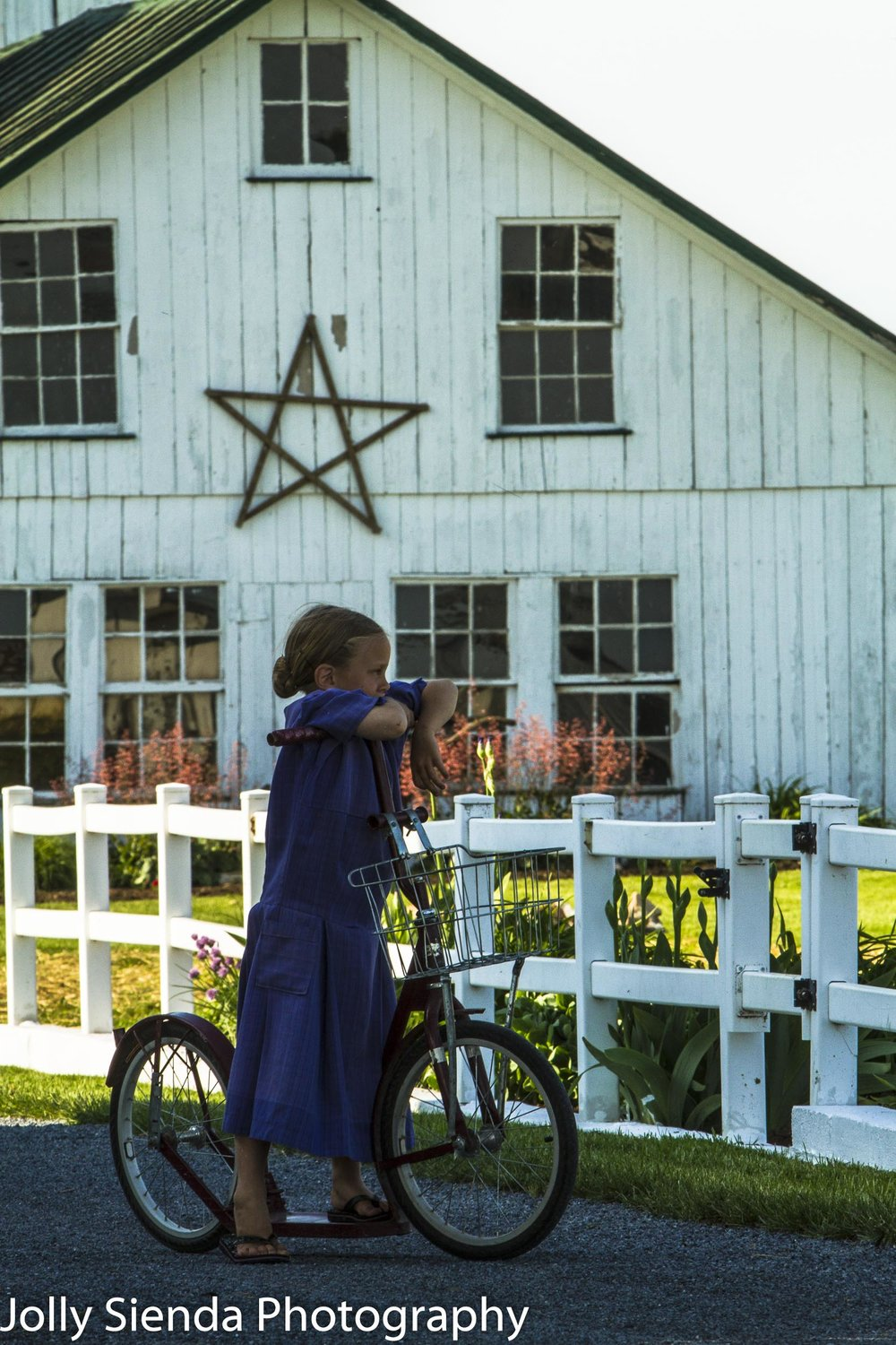 Portrait of an Amish girl posing with her bicycle