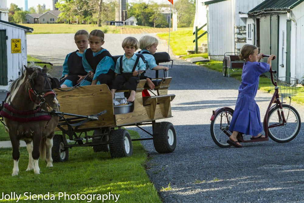 Amish children and a pony cart