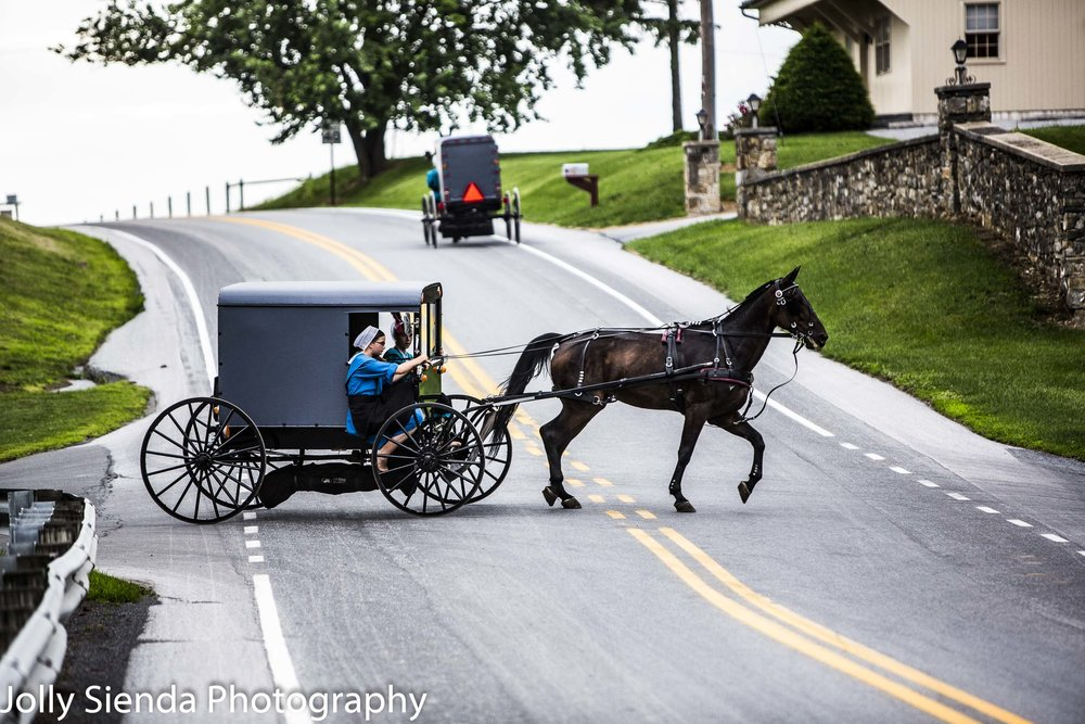 Two Amish buggies; one with Amish girls steering their horse and