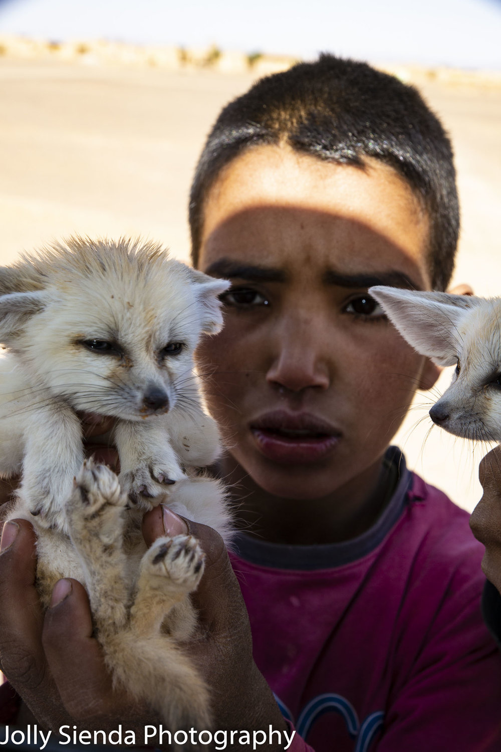 Boy holds Fennec Foxes