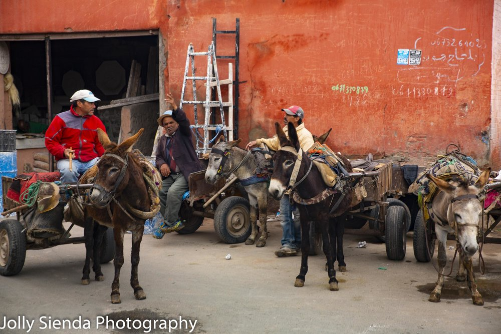 Men rest in the souk with their donkeys