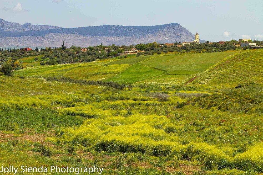 Moroccan and Italian-like valley landscape