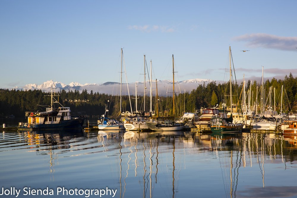 Light reflections of boats in a marina on the water, a seagull,