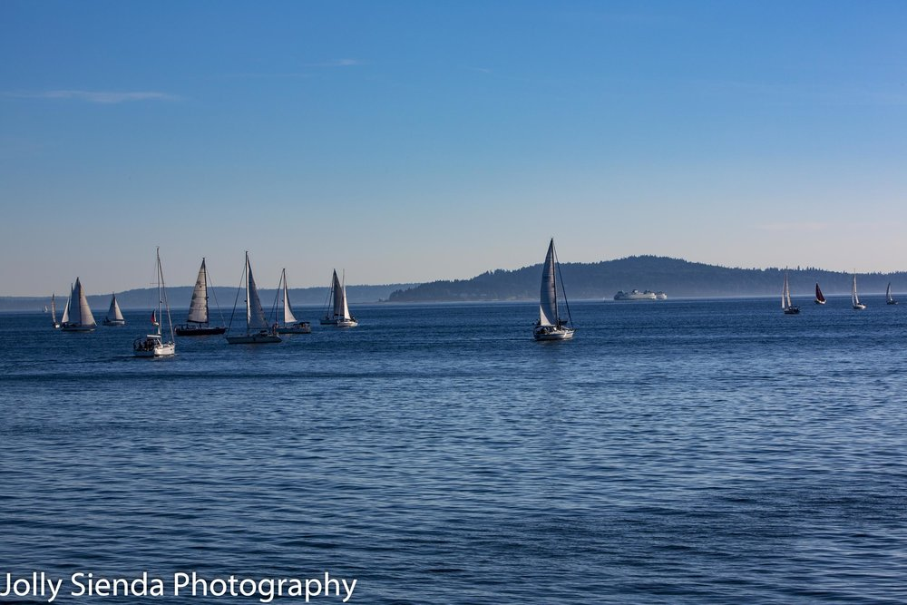 Sailboat regatta race and a ferry boat on the bay