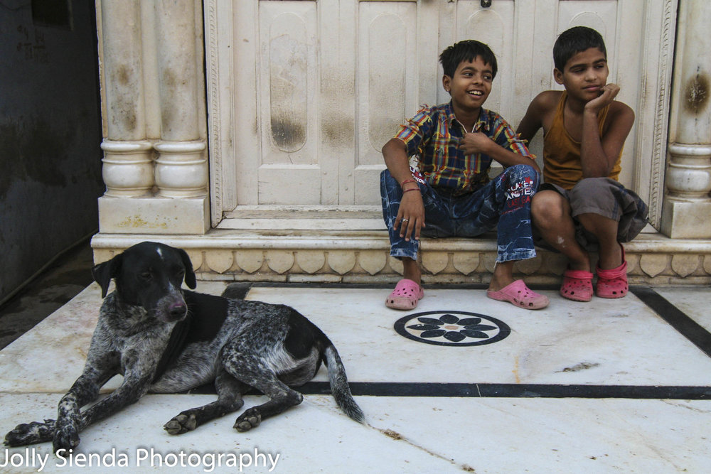 Boys laugh with their dog crossing his paws
