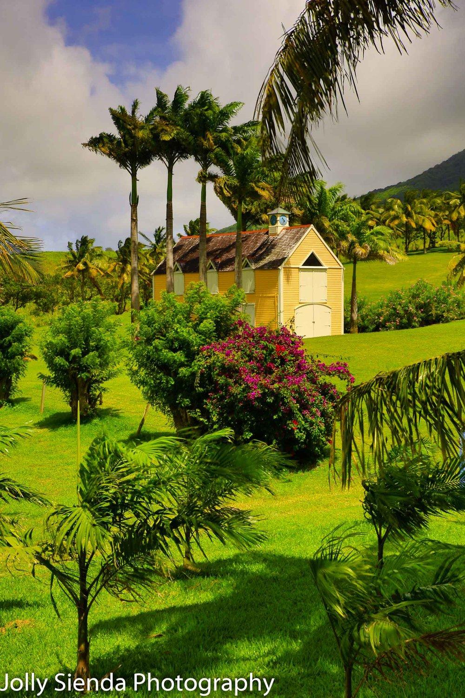 The Yellow Caribbean Barn on St. Kitts