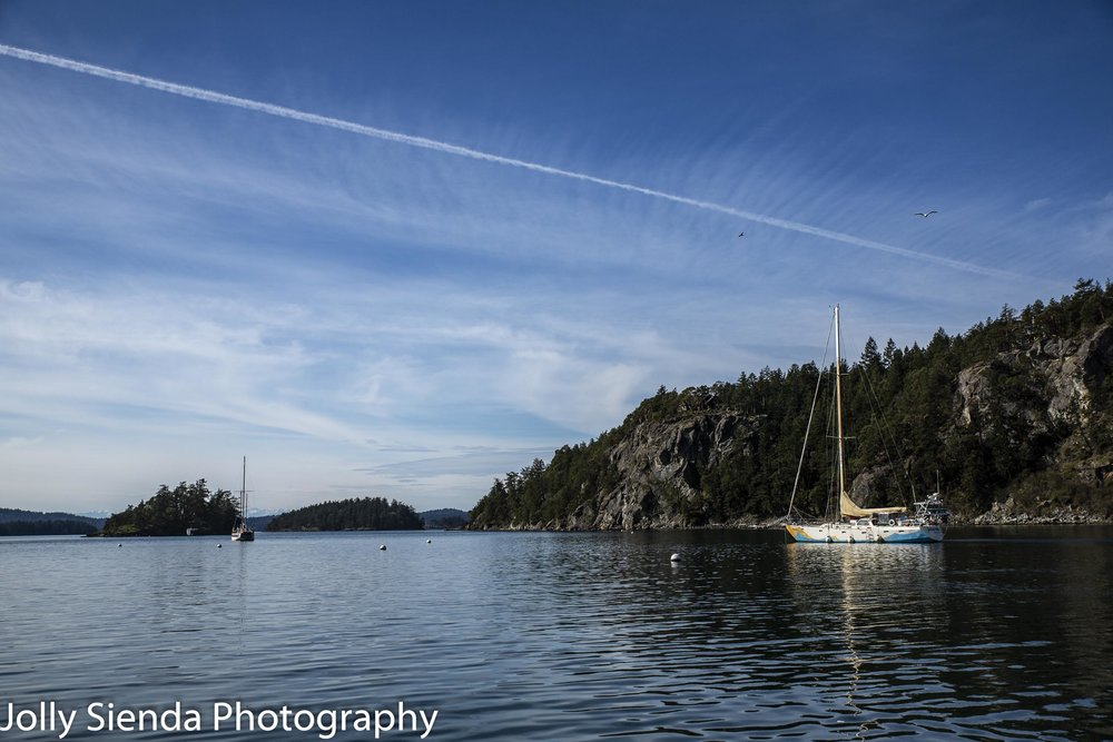 Contrails in the blue sky and sailboats at Deer Harbor.