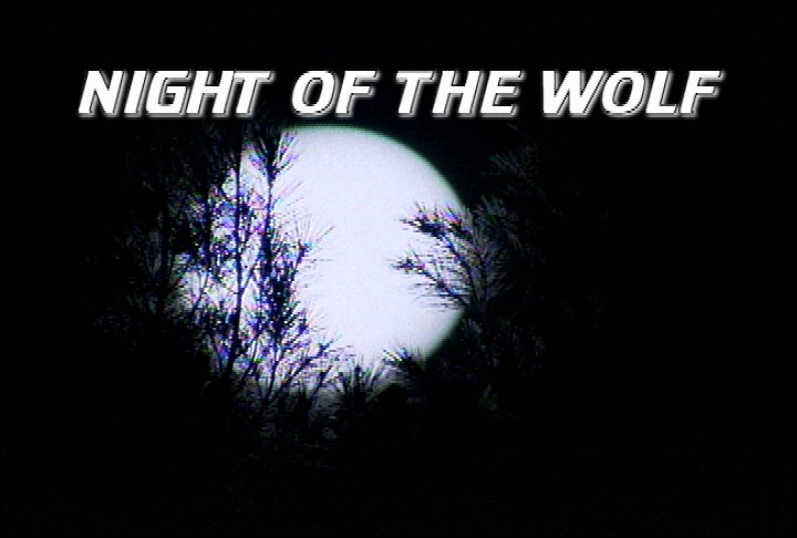 Night of the Wolf.jpg
