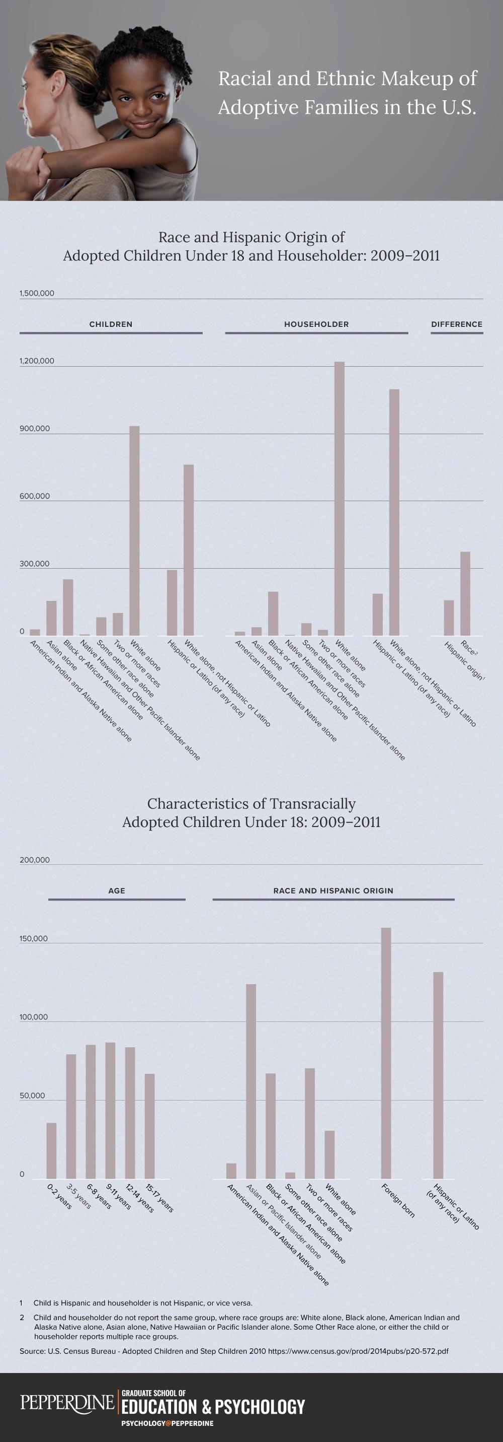 adoption-race-infographic.jpg