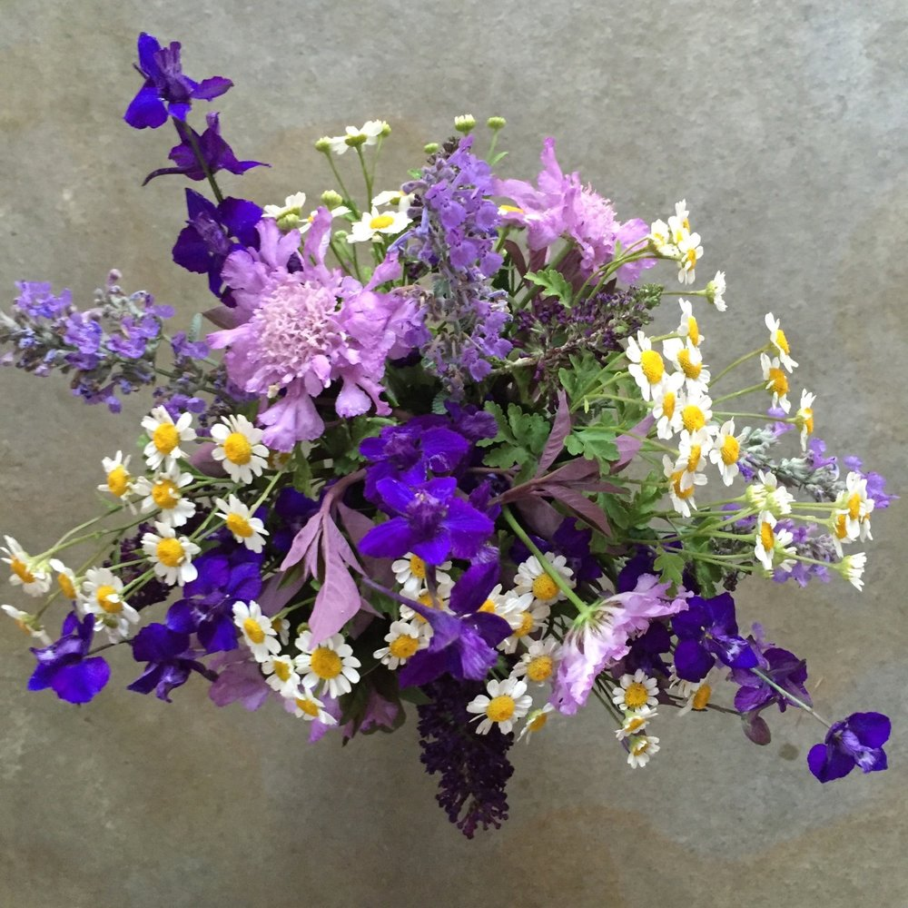 From the garden. Flowers in or near the vegetable garden attract pollinators and beneficial insects. Here, larkspur, feverfew, scabiosa, catmint and buddleia.