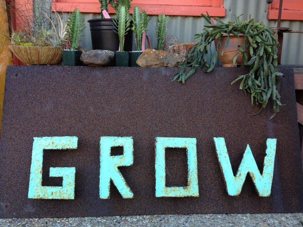 October 3, 2014      Grow Nursery  in Cambria, California