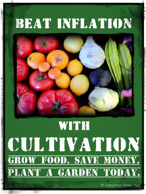 April 2, 2014    I'm beginning a series of posts on how to grow a vegetable garden.   Poster source:  Suburban Stone Age