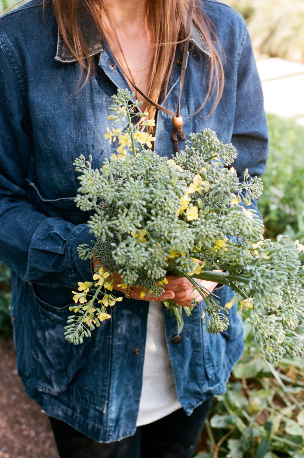 ediblegardensla :     A bouquet of broccoli.   Photograph by Brian Ferry     Perfect.