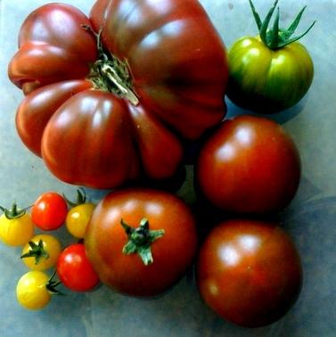 EG A Day's Harvest 2011.JPG