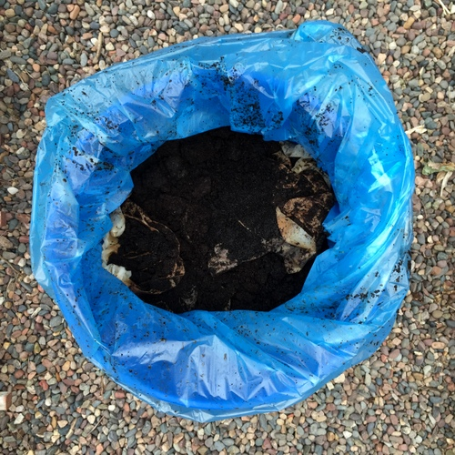 EG Coffee grounds for compost.JPG
