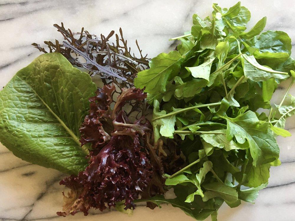 Romaine, Lolla Rossa lettuce, mustard and arugula