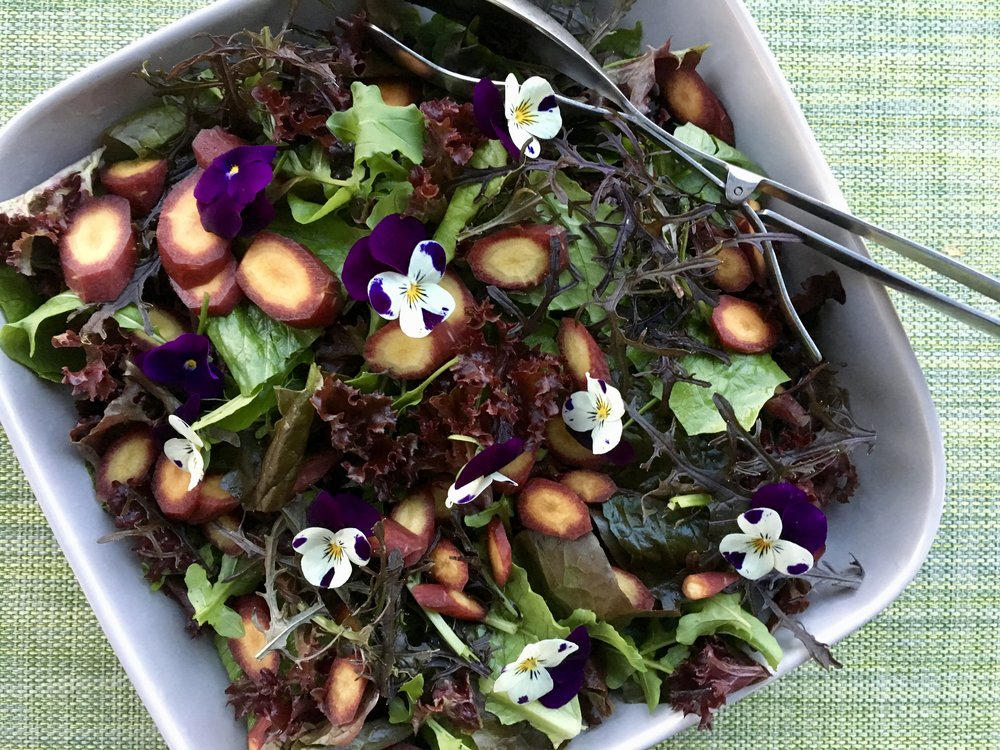 Winter garden salad
