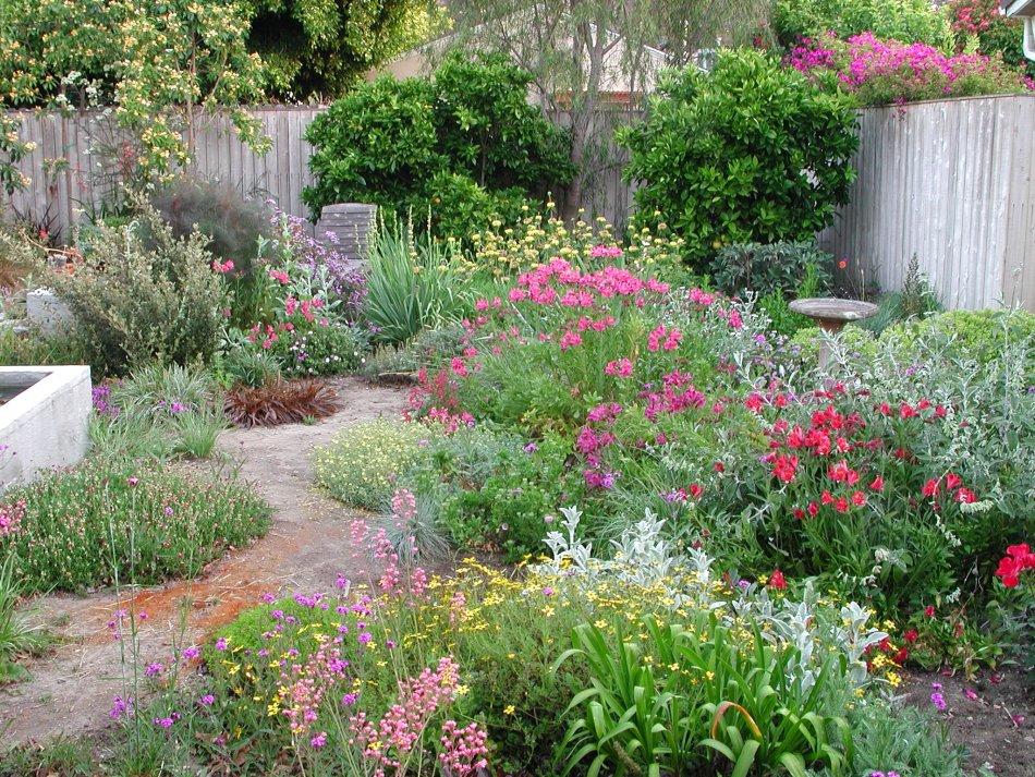 The backyard garden of Robert Smaus.  Photo source: Robert Smaus