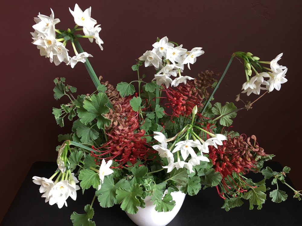 Grevilleas, paperwhites and nutmeg geraniums for a winter bouquet
