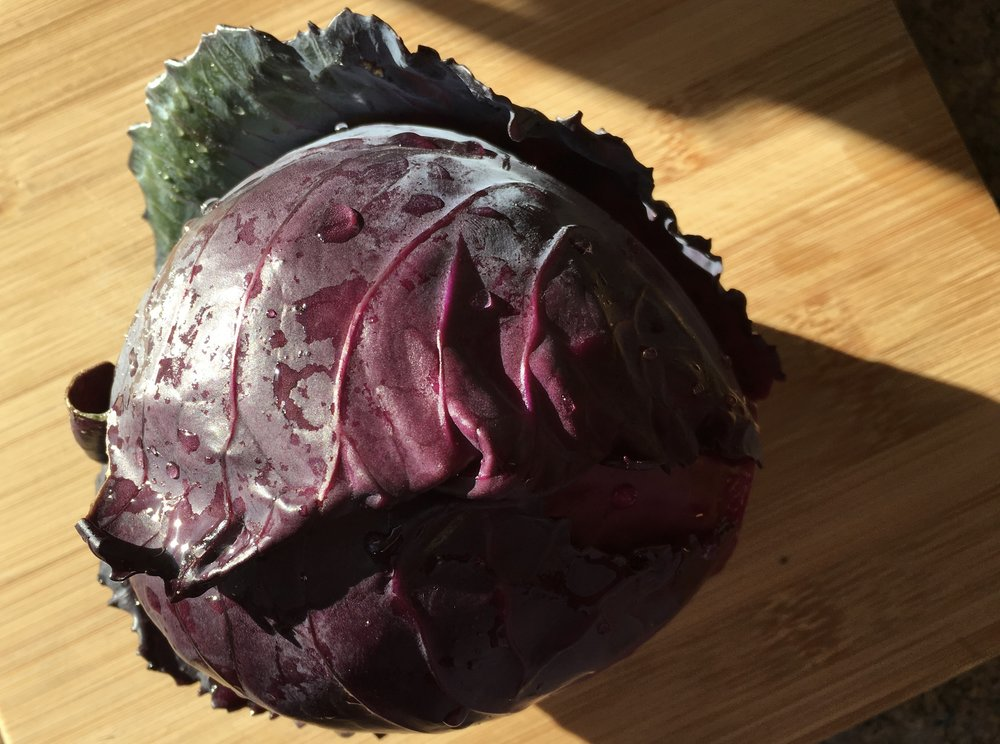 """'Red Acre"""" cabbage"""