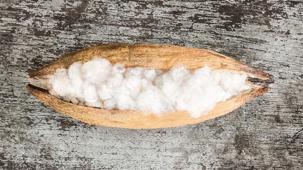 White-silk-cotton-498628013_2940x2940.jpg