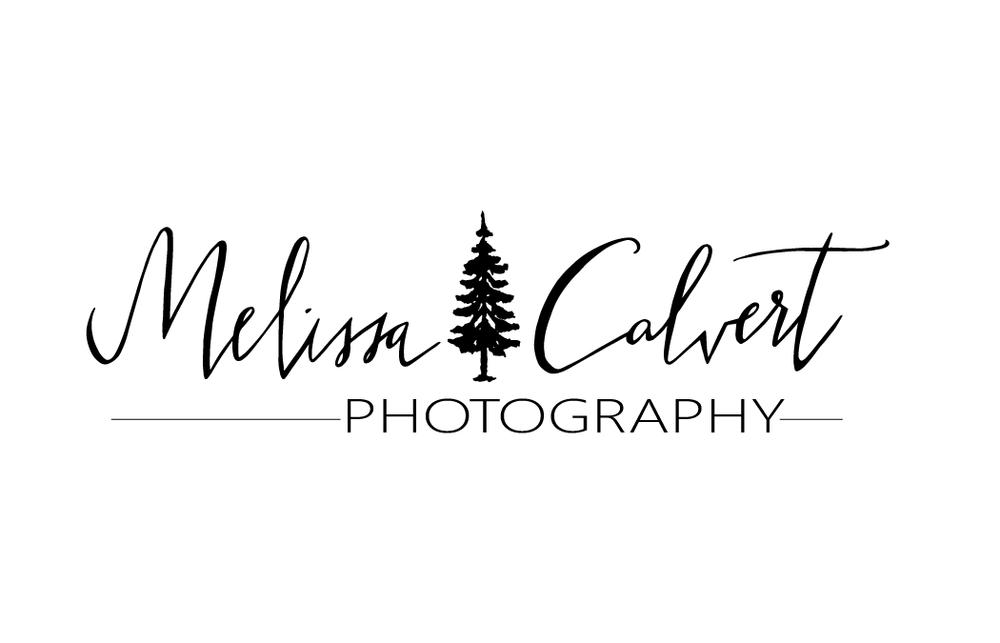 Clavert Logo-01.png