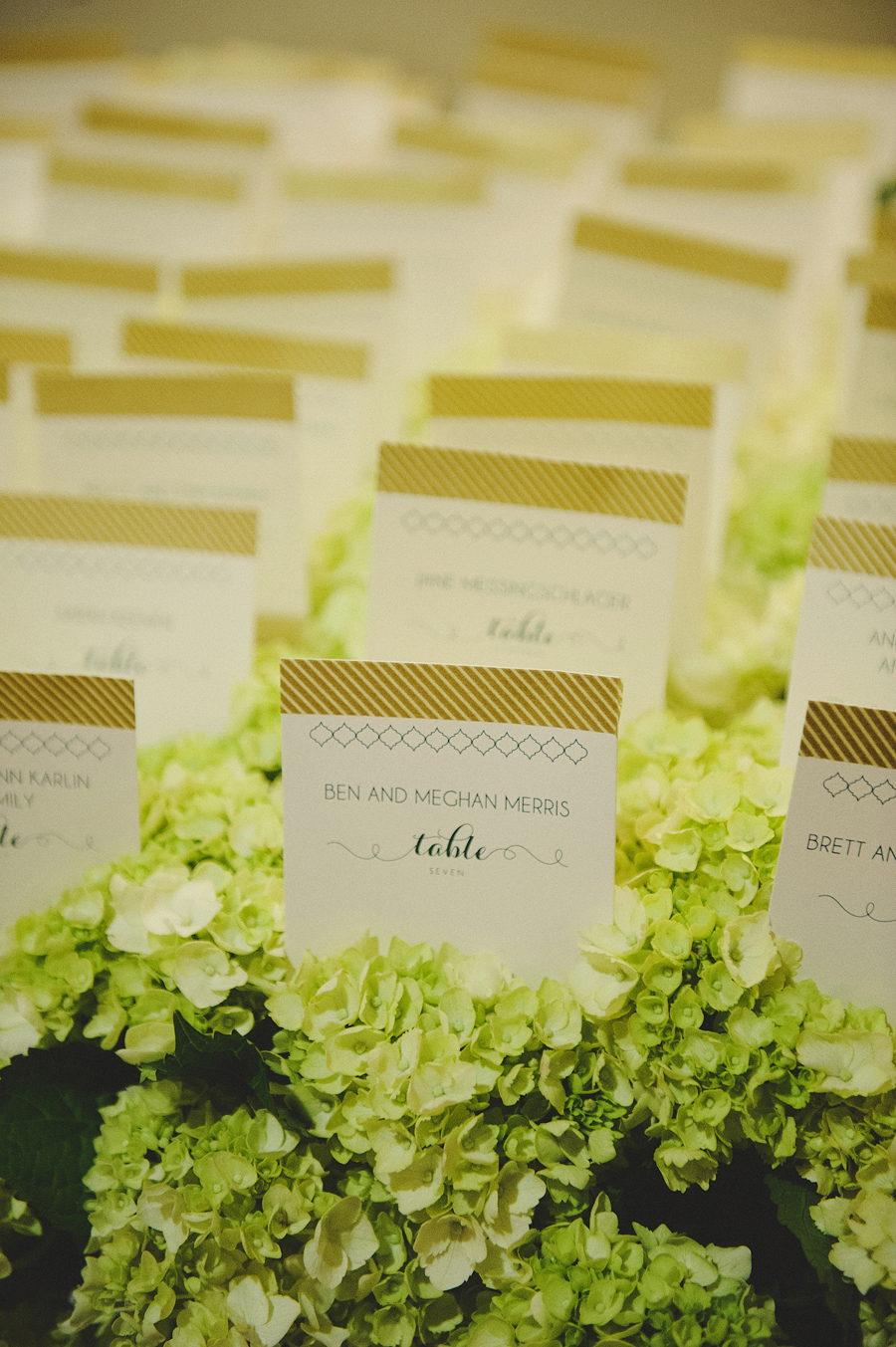 Escort cards in a bed of chartreuse hydrangea for wedding reception by Yellow Canary Floral & Event Design