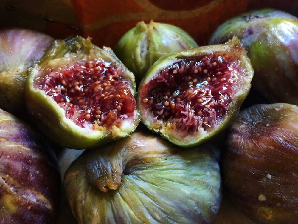 Wild Figs Bought From the Acropolis Slopes