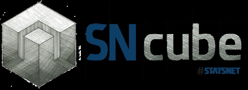Logo-SN-Cube.png