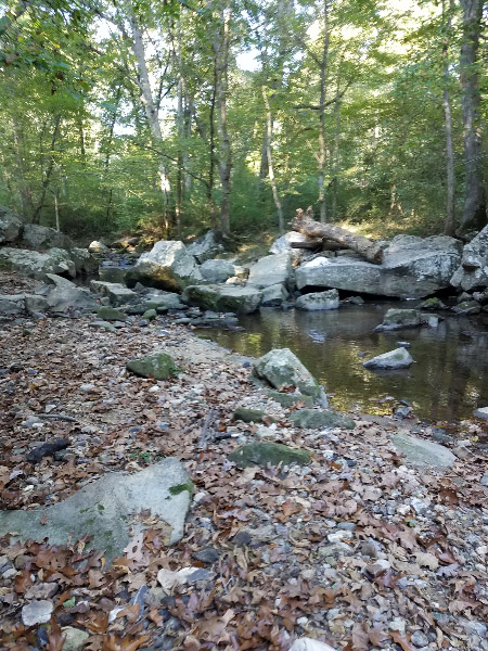 - I had planned to volunteer at two stream assessments by 9th graders in October.  Both assessments were scheduled to be at the Middle Patuxent Environmental Area but one was cancelled after a heavy rain caused a dangerous situation at the stream – so I only have pictures from one stream assessment. The stream was smaller than the two other locations along the Middle Patuxent that were assessed in September. We crossed it on some rocks (the path came to the river  near where the big log is lying on top of the rocks).