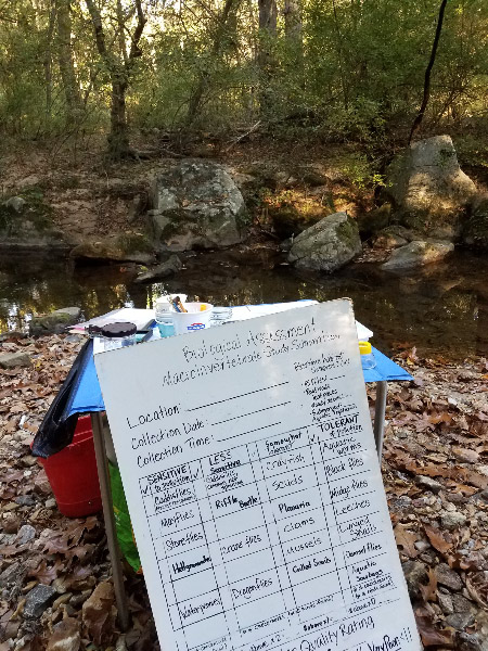 - All the gear for the abiotic and biotic assessments was set up on the side of the stream across from the path. It was very calm and shady as we set up.
