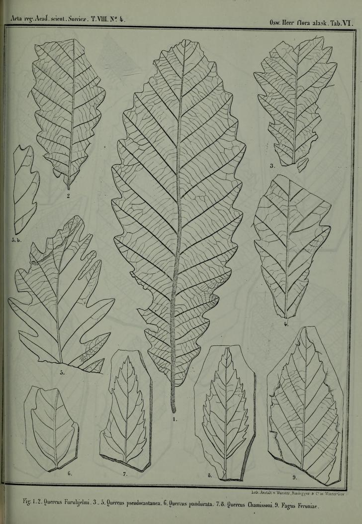 27f 18 12.jpg