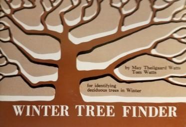 winter tree finder.jpg