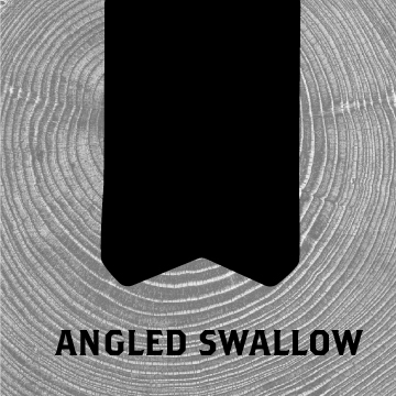 shop-angled-swallow.jpg