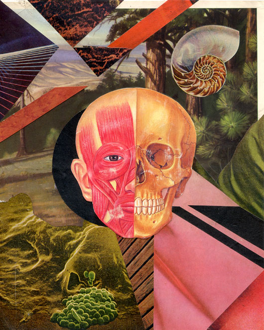 Untitled (Pink Skull)