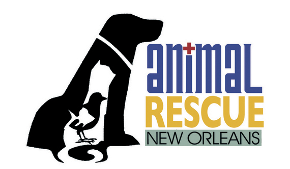 animal_rescue_new_orleans.jpg