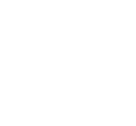 bewasbeen_concourslepine_medaille_or.png