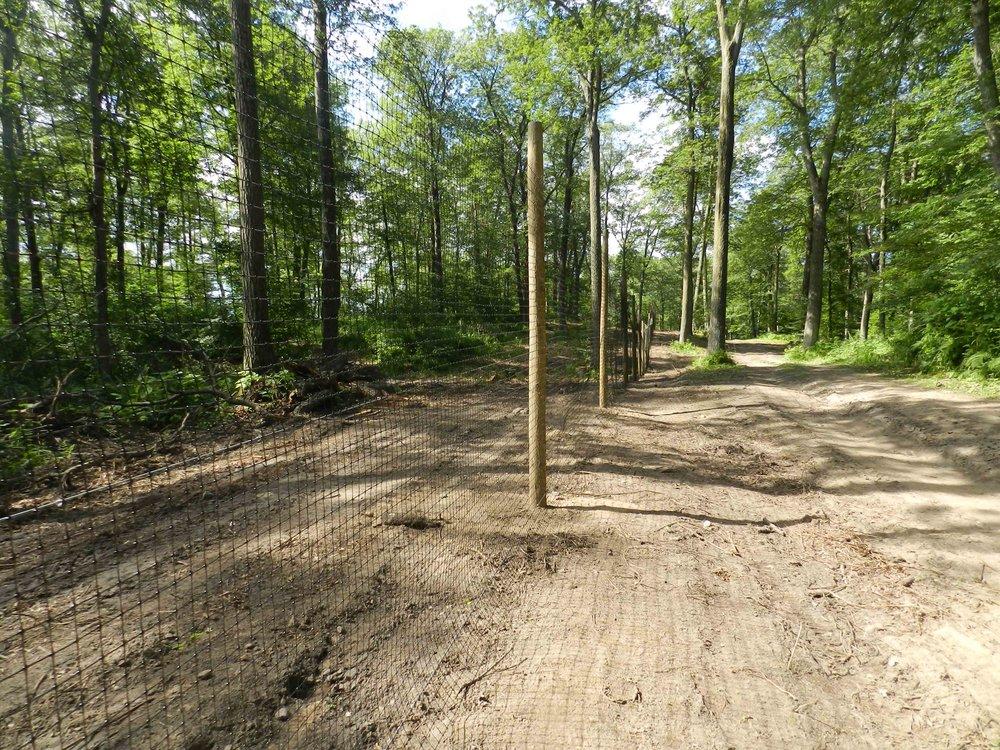 Deer Fenceing 7-22-2015 (3).jpg