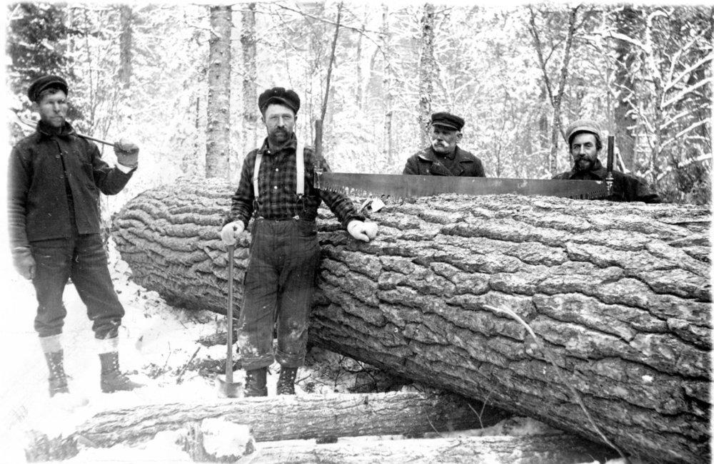 Lumbering St John's 001.jpg