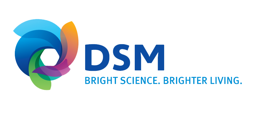 dsm-logo-jpg-version.png