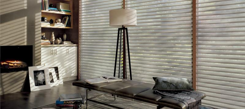 The Austria ®  Collection of Silhouette ®  Shadings