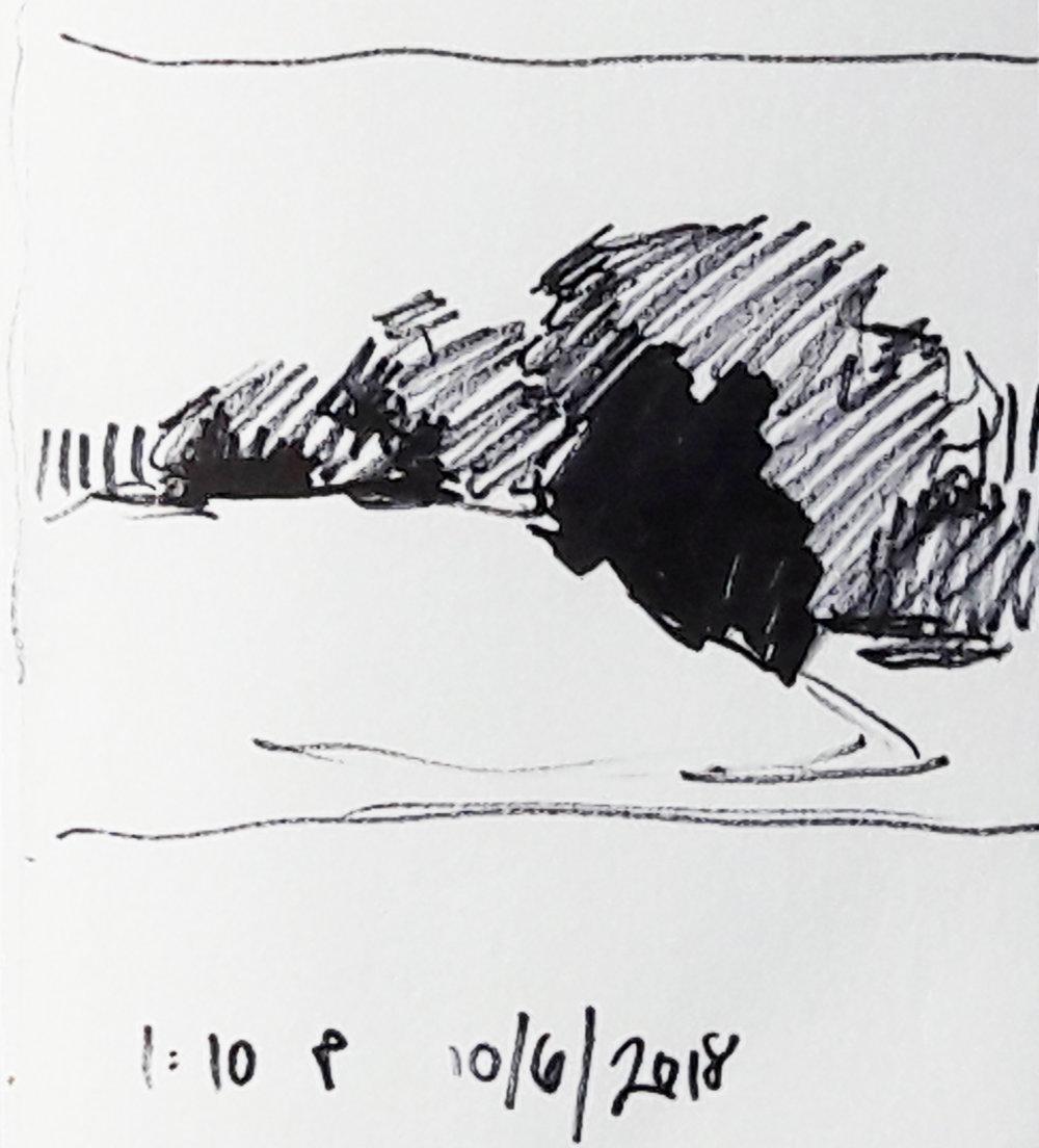 10_6_2018_sketch2.jpg
