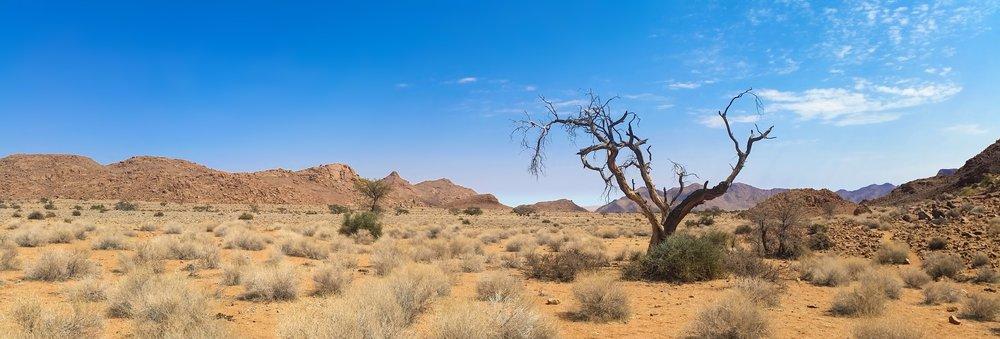 africa-arid-barren-259526.jpg