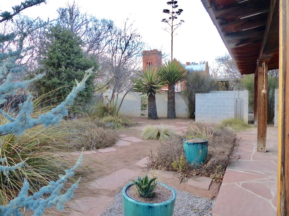 backyard:bluepots.jpg