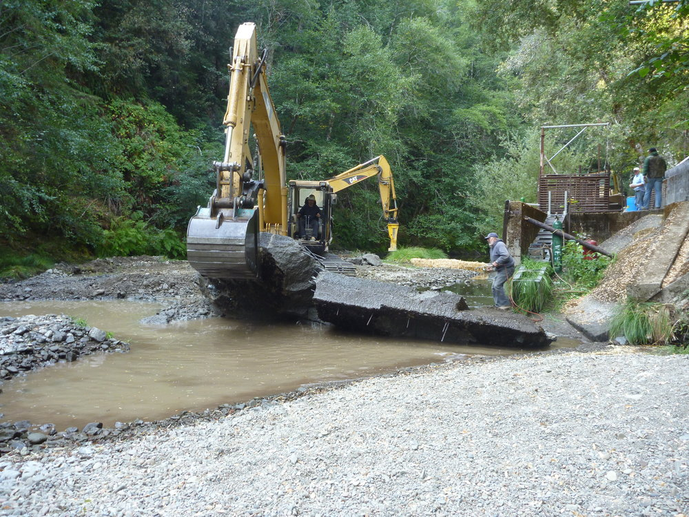The  Hollow Tree Creek Hatchery Fish Passage Improvement Project  was completed in the late 2012 field season. The overall goal was to improve fish passage and instream spawning and rearing habitat for Coho salmon and steelhead trout in the Hollow Tree Creek watershed, a tributary to South Fork Eel River. The project removed a 60-foot concrete sill at the Hollow Tree Creek Hatchery to provide unimpeded access to 47 miles of high quality habitat in the Hollow Tree Creek watershed.