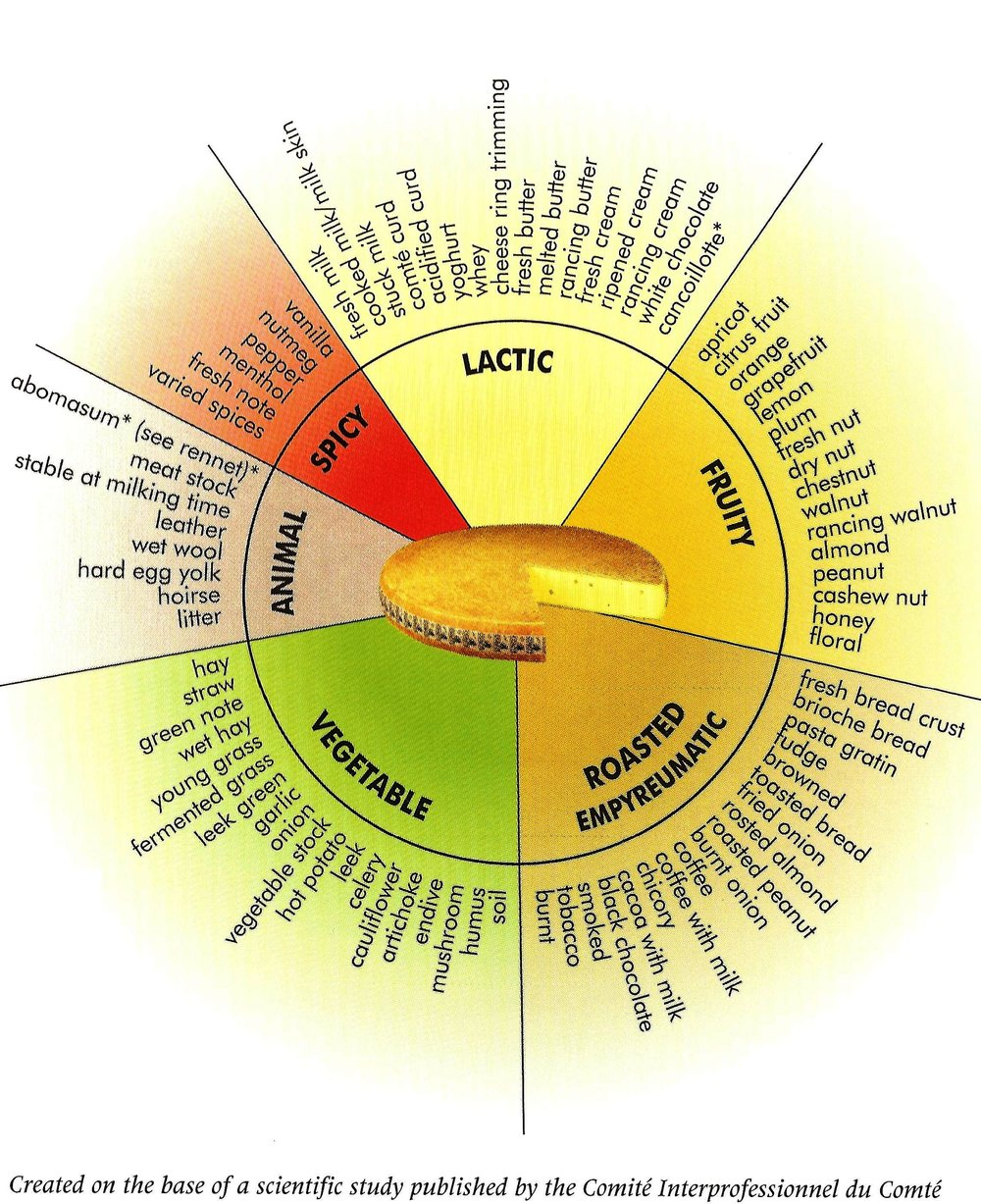 Comté Flavor Wheel - The vocabulary of Comté's flavors. When you just don't know the right word to describe what you're tasting, here are several dozen of them.